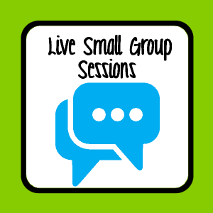 Live Small Group Sessions